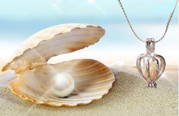 Obrázek Perla přání v perlorodce