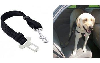 Obrázek Bezpečnostní pás pro psa