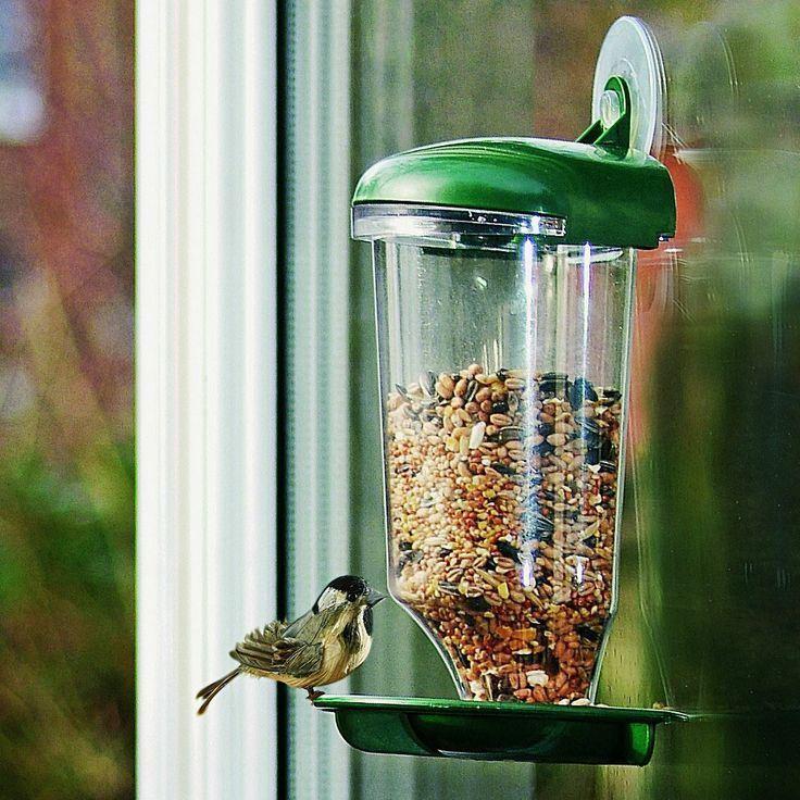 Ptačí krmítko na sklo
