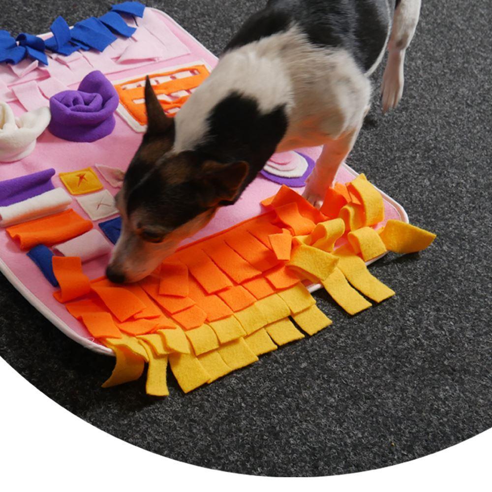 Hrací deka pro mazlíčky