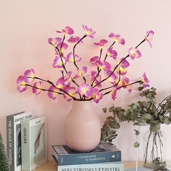 Obrázek z Svítící větvičky orchideje