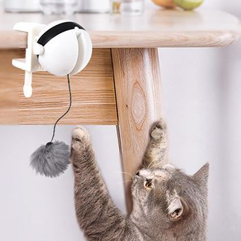 Obrázek Interaktivní hračka pro kočky
