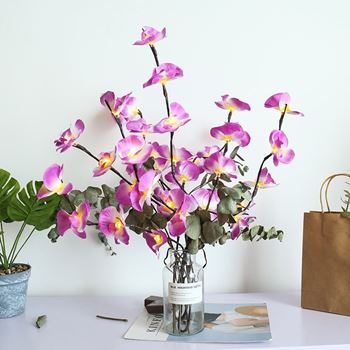 Obrázek Svítící větvičky orchideje