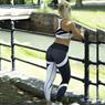 Obrázek z Legíny na cvičení - S/M