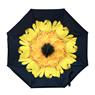 Obrázek z Obrácený deštník - slunečnice