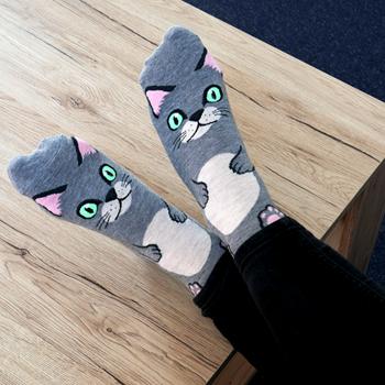 Obrázek Veselé ponožky s kočičkou - šedé