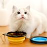 Obrázek z Skládací silikonová miska pro zvířata