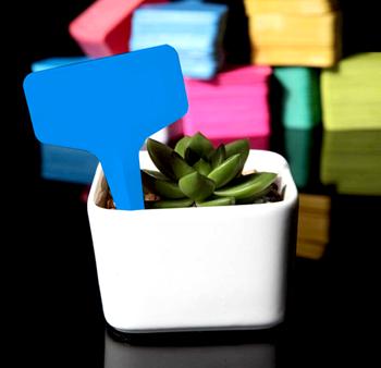 Obrázek Štítky k rostlinám - modrá