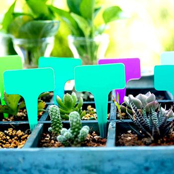 Obrázek Štítky k rostlinám - zelená