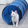 Obrázek z Tunel pro kočky