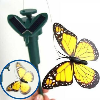 Obrázek z Solární motýl