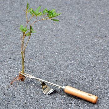 Obrázek Vytrhávač plevele
