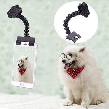 Obrázek Pomůcka pro focení mazlíčků