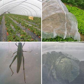 Obrázek z Ochranná síť proti hmyzu