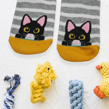 Obrázek z Veselé kočičí ponožky - šedé