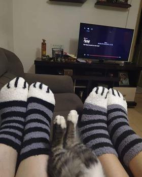 Obrázek z Ponožky tlapičky